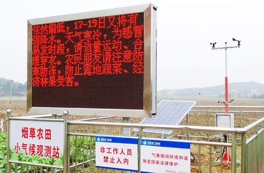 农业气象观测站 耒阳烟叶案例 现场图2.jpg