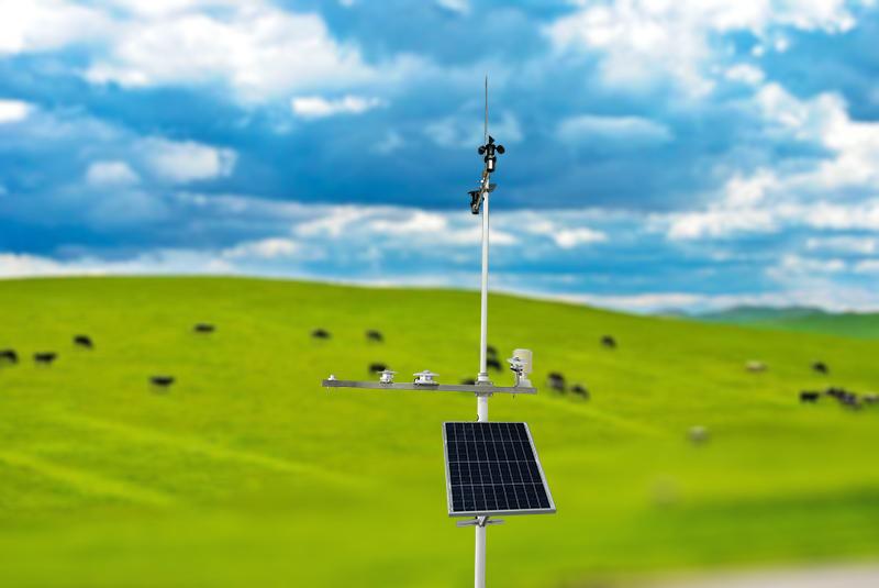 TWS-WS5 智慧牧草物联网 3.jpg